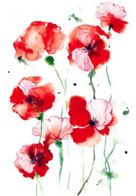 Canvas print poppies