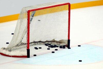 Canvas print Porta hockey  con dischi