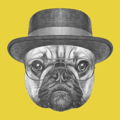 Canvas print Portrait of French Bulldog with hat and glasses. Hand drawn illustration.