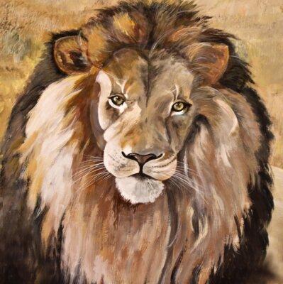 Canvas print Portrait of huge beautiful male African lion