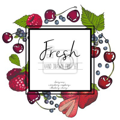 PrintVector set of berry mix. Strawberry, raspberry, blueberry, cherry. Hand drawn color set of summer fresh fruits with sqaure border text template.