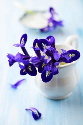 Canvas print Purple iris flowers in a vintage cup