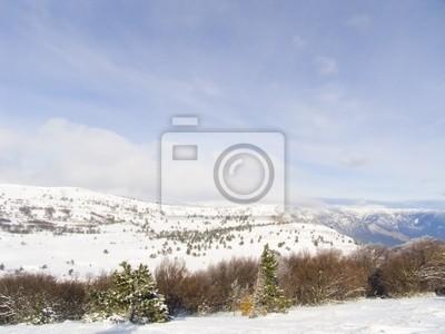 quiet morning winter mountain landscape