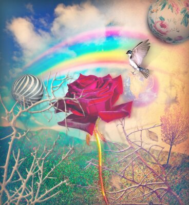 Canvas print Rainbow and red rose in the green valley
