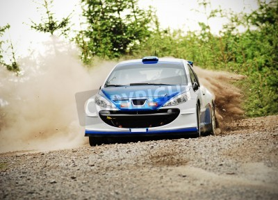 Canvas print Rally car in action