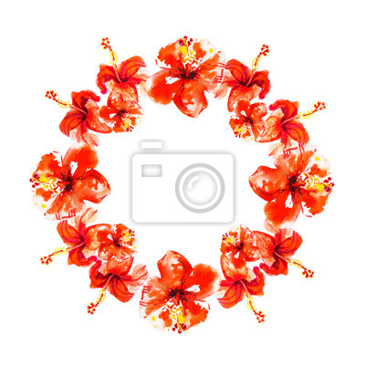 Red hibiscus flower wreath. Watercolor painting. Exotic plant. Floral print. Sketch and blurry drawing. Botanical composition. Greeting card. Flower painted background. Hand drawn illustration.
