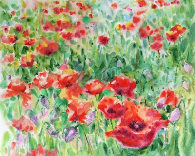 Canvas print Red poppies flowers background, watercolor.
