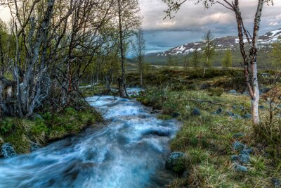 Canvas print River in Norway