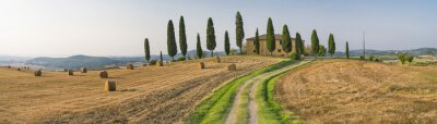 Canvas print road to the farm in Tuscany in Italy