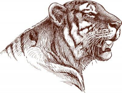Canvas print roaring tiger