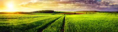 Canvas print Rural landscape sunset panorama