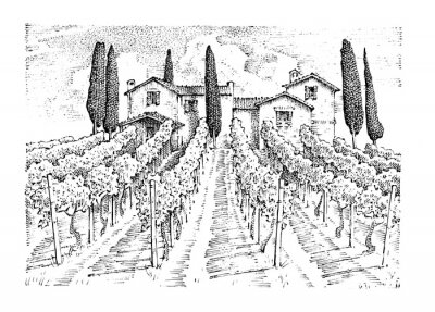 Canvas print rustic vineyard. rural landscape with houses. solar tuscany background. fields and cypress trees. harvesting and haystacks. engraved hand drawn in old sketch and vintage style for label.