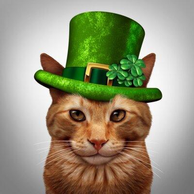 Canvas print Saint Patricks Day Cat