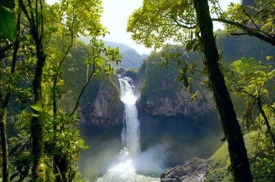 Canvas print San Rafael Falls. The Largest Waterfall in Ecuador