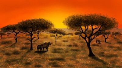 Canvas print Savannah at the sunset