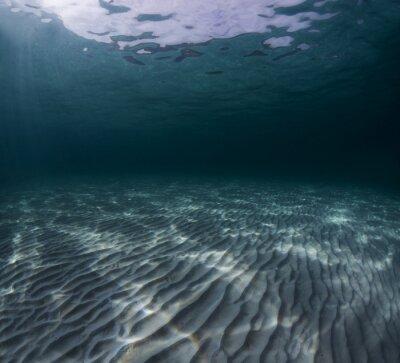 Canvas print Sea