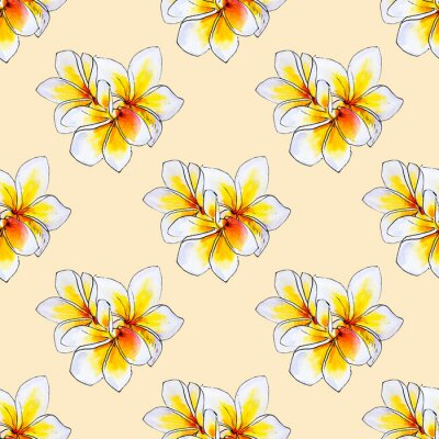 Seamless pattern from white plumeria flowers. Frangipani. Watercolor painting. Exotic plant. Floral print. Sketch drawing. Botanical composition. Flower painted background. Hand drawn illustration.