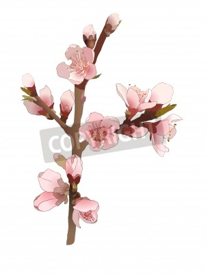 Seamless pattern with blossoming almond branch with pink flowers.