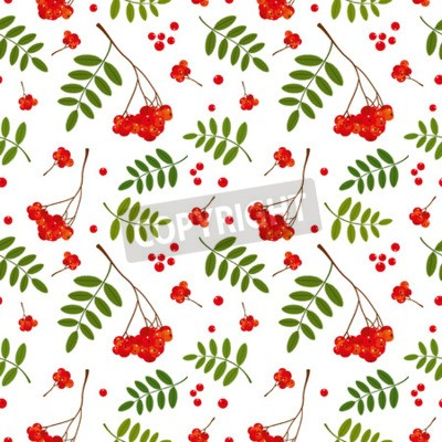 Seamless pattern with red and orange Rowan berries and leaves. Vector illustration. White background.