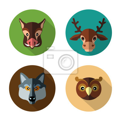 Set flat icons of forest animals like the wild boar, deer, wolf, owl on a colored background