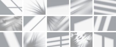 Canvas print Set from 15 shadows. Overlay shadow from windows, openings and tropical plants. High quality shadows. Vector illustration Ai and Eps file.