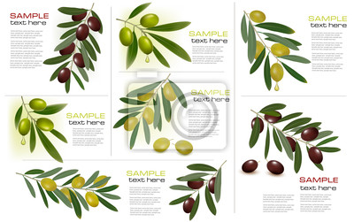 Set of backgrounds with green and black olives.