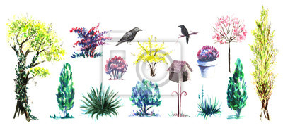 Set of decorative elements. Garden flowering plants, flowers and shrubs. Birdhouse on a stalk, Black birds starlings. Hand-drawn watercolor illustration. Isolated on white background.