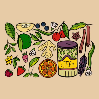 Set of elements of herbal and fruit tea: strawberry, raspberry, lemon, blueberry, bergamot, orange, cinnamon, tea leaves. Hand-drawn illustration.