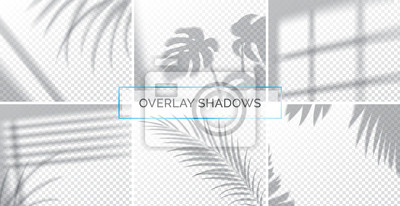 Canvas print Set of shadows, overlay effects mock up, window frame and leaf of plants, natural light, vector illustration.