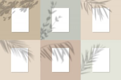 Canvas print Shadow Overlay Plant Vector Mockup A4 Paper sheets. Shadows overlay effects Of A leaf on blue background