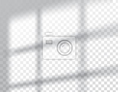 Canvas print Shadows overlay effects mock up, window frame natural light, vector illustration.