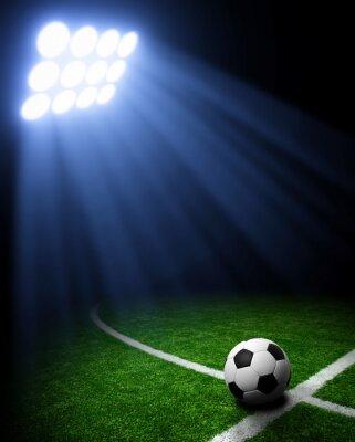 Canvas print Soccer stadium