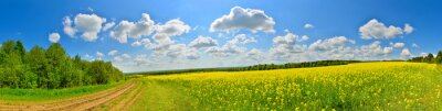 Canvas print Spring flower field