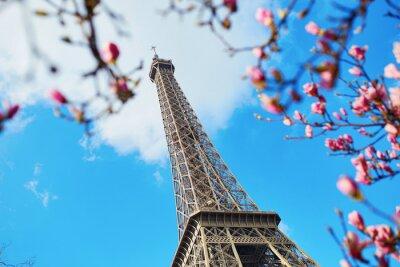 Canvas print Spring in Paris