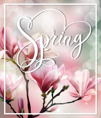 Canvas print Spring text with blossom brunch of  Magnolia with blurry effect. Spring background. Template Vector.