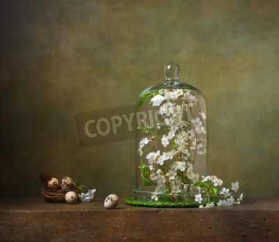 Canvas print Still life with cloche with flowering tree branches