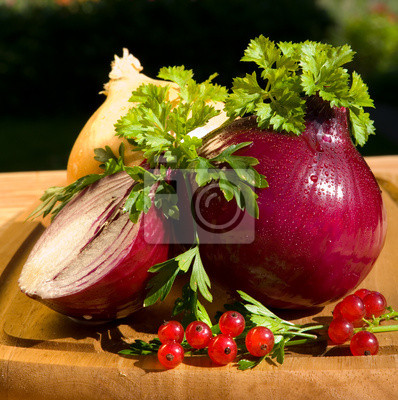 Still life with onion