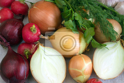 Still life with onions, radishes, dill and parsley closeup