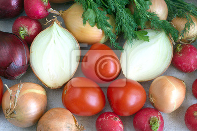 Still life with onions, radishes, tomatoes dill and parsley