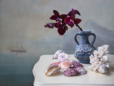 Still life with purple orchid and sea shells