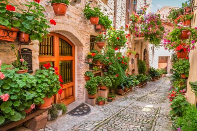 Canvas print Street in small town in Italy in summer, Umbria