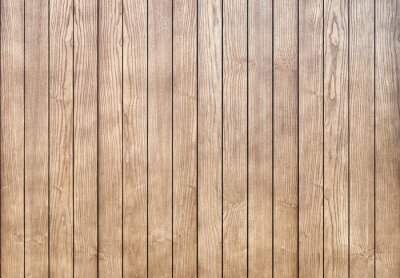 Canvas print Stylish contemporary wainscoting made of thin light toned ash timber planks as textured background for design close view