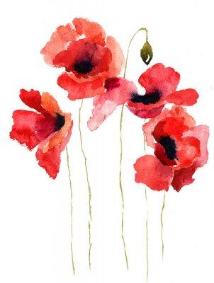 Canvas print Stylized Poppy flowers illustration