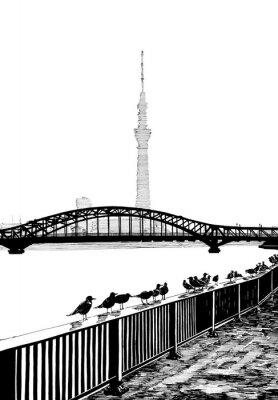 Canvas print Sumida bridge view