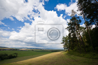 summer landscape with cloudy sky over meadow