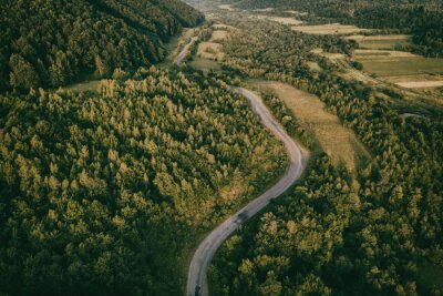 Summer landscape with green trees and narrow winding road, aerial view, outdoor travel background, vintage image
