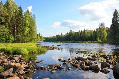 Canvas print Summer river