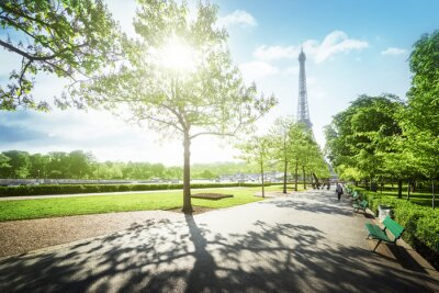 Canvas print sunny morning and Eiffel Tower, Paris, France