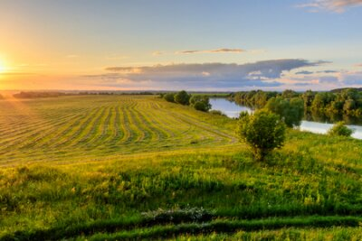 Sunset at cultivated land in the countryside on a summer evening with cloudy sky background and river. Procurement of food for animals. Combined field. Landscape.