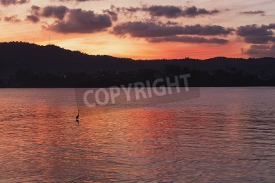 Sunset at sea with a silhouette of a heron